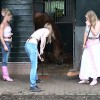 Cleaning the stables